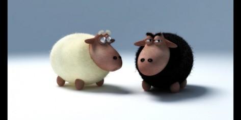 ovelha-branca-x-negra-660x330